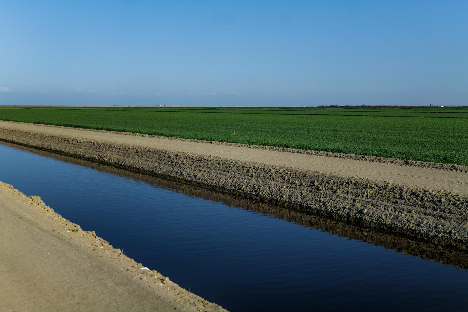 Canals are filled with groundwater that flows alongside the Corcoran Cross Creek Levee.
