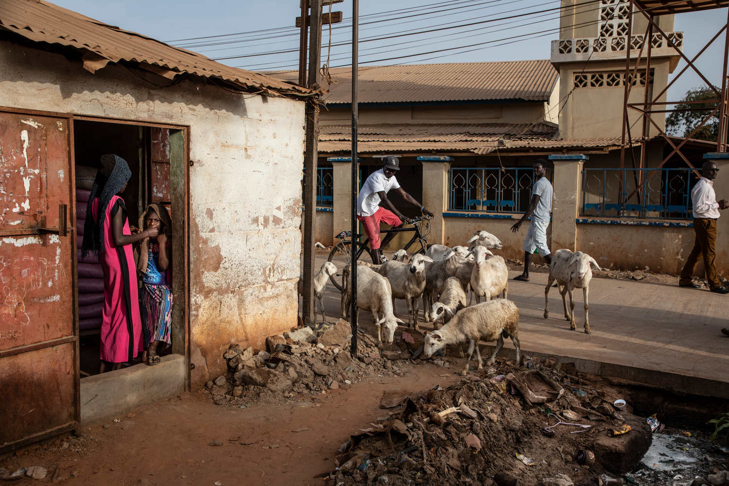 Sheep scavenge across the street from a borehole located on the grounds of a mosque.